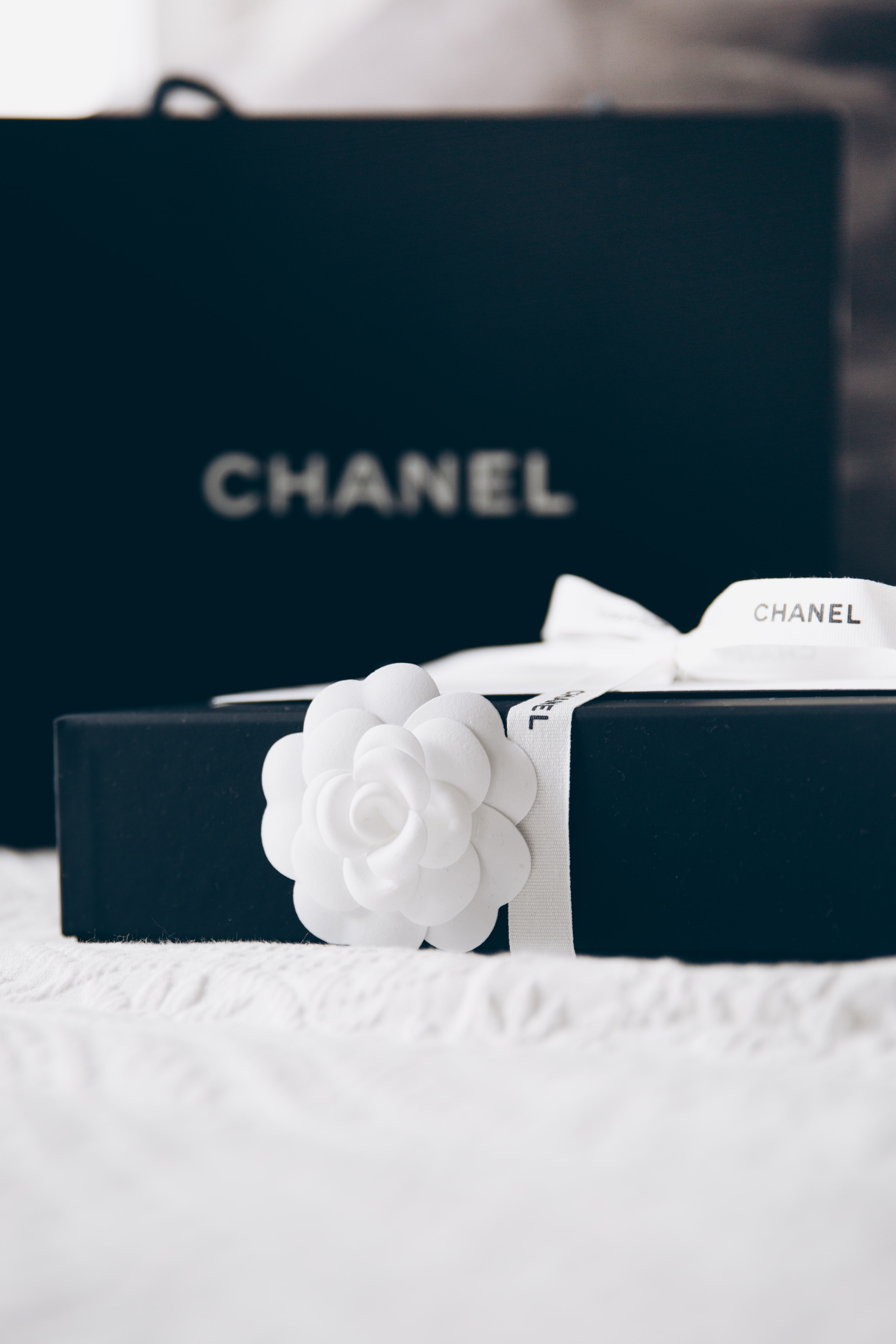 ded68491a3be Review  Chanel Wallet on Chain WOC - You rock my life