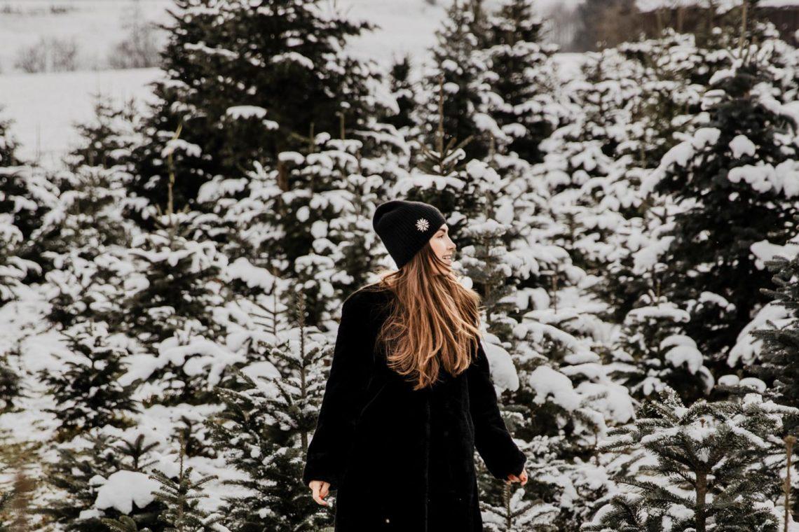 Music: Instrumental Christmas Jazz Playlist - You Rock My Life